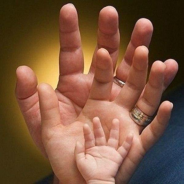 Сімейні відносини
